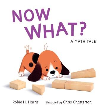 Now what? : a math tale - Robie H Harris