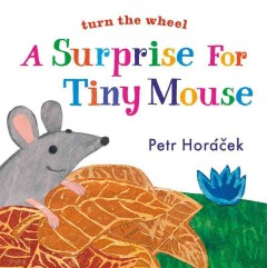 A surprise for Tiny Mouse - Petr Horácek