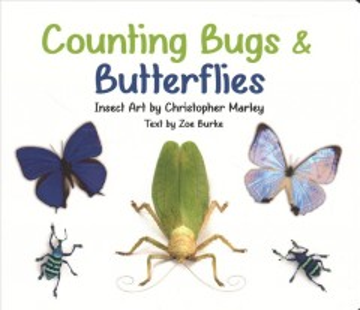 Counting bugs & butterflies - Zoe Burke