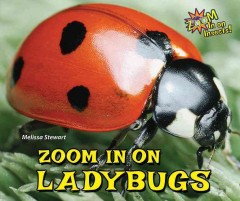 Zoom in on ladybugs - Melissa Stewart
