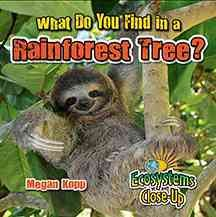 What do you find in a rainforest tree? - Megan Kopp