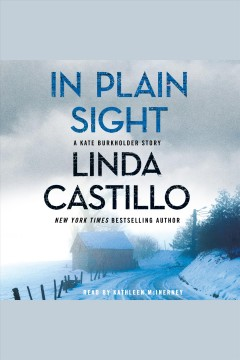 In plain sight - Linda Castillo