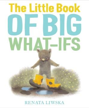 The little book of big what-ifs - Renata Liwska
