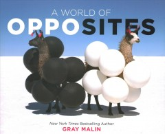 A world of opposites - Gray Malin