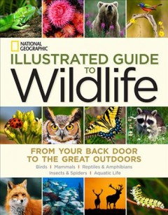 National Geographic illustrated guide to wildlife : from your back door to the great outdoors : mammals, birds, reptiles & amphibians, aquatic life, insects & spiders