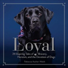 Loyal : 38 Inspiring Tales of Bravery, Heroism, and the Devotion of Dogs - Rebecca Ascher-Walsh