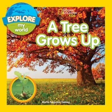A tree grows up - Marfe Ferguson Delano