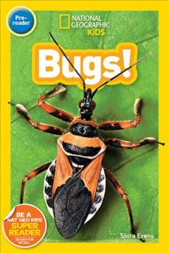 Bugs - Shira Evans