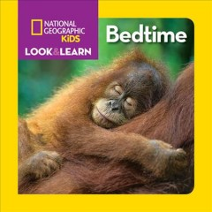 Bedtime - Ruth A Musgrave