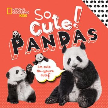 So cute! pandas - Crispin Boyer