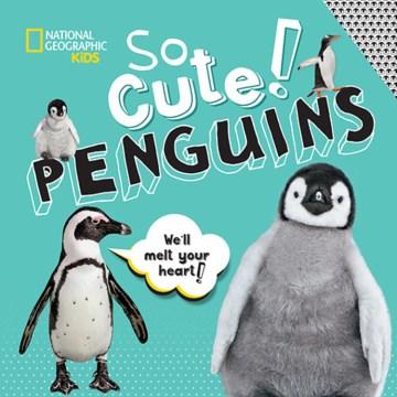 So cute! Penguins - Crispin Boyer