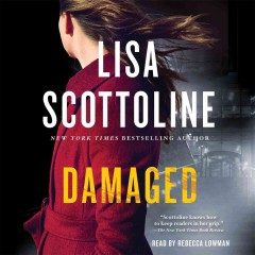 Damaged : [a Rosato & DiNunzio novel] - Lisa Scottoline