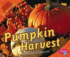 Pumpkin harvest - Calvin Harris