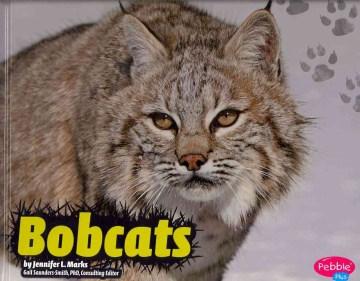 Bobcats - Jennifer Marks