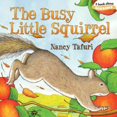 The busy little squirrel - Nancy Tafuri