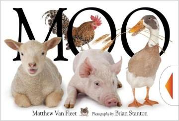 Moo! - Matthew Van Fleet