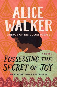 Possessing the secret of joy - Alice Walker