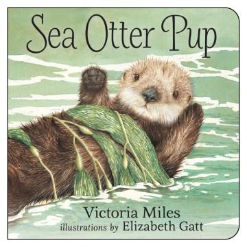 Sea otter pup - Victoria Miles