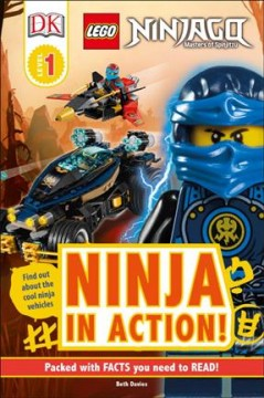 Ninja in action! - Beth Davies