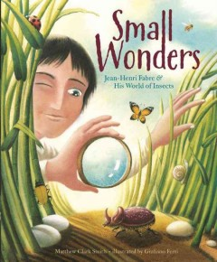 Small wonders : Jean-Henri Fabre & his world of insects - Matthew Clark Smith