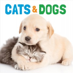 Cats & dogs.