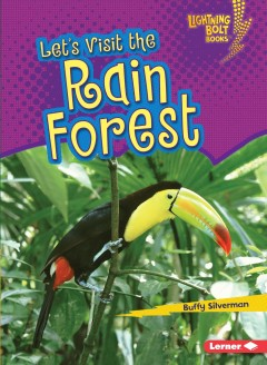 Let's visit the rain forest - Buffy Silverman