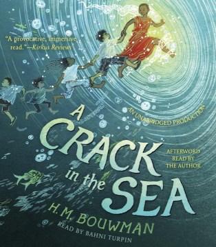 A crack in the sea - H. M Bouwman