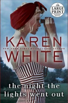 Night the Lights Went Out - Karen White