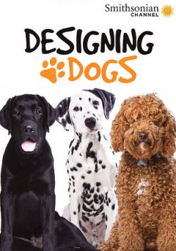 Designing Dogs.
