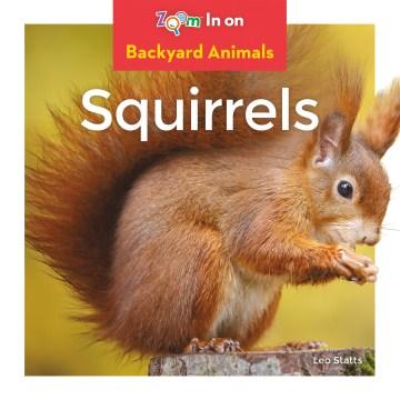 Squirrels - Leo Statts