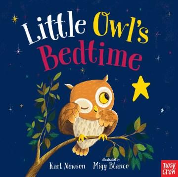 Little Owl's bedtime - Karl Newson