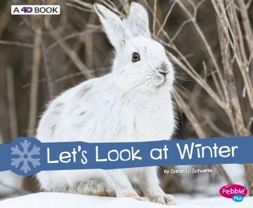 Let's look at winter - Sarah L Schuette