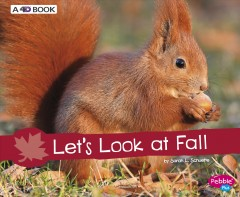 Let's look at fall - Sarah L Schuette