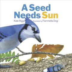 A seed needs sun - Kate Riggs