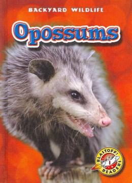 Opossums - Emily K Green