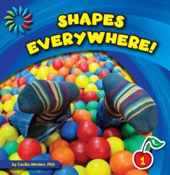 Shapes everywhere - Cecilia Minden