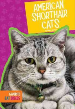 American shorthair cats - Mari C Schuh