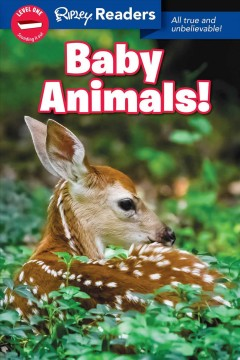 Baby animals : all true and unbelievable! - Korynn Freels