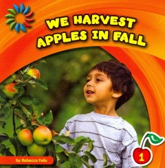 We harvest apples in fall - Rebecca Felix