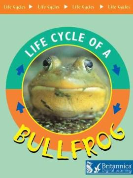 Bullfrog - Jason Cooper
