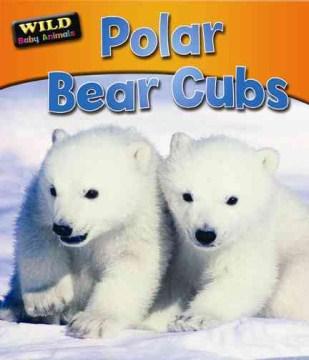 Polar bear cubs - Ruth Owen