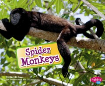 Spider monkeys - Mary R Dunn