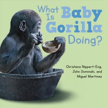 What is baby gorilla doing? - Christena E Nippert-Eng