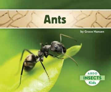 Ants - Grace Hansen