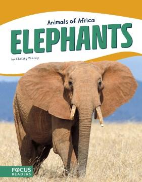 Elephants - Christy Mihaly