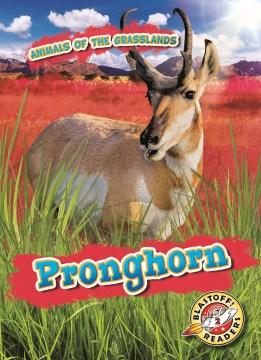Pronghorn - Kaitlyn Duling