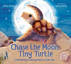 Chase the Moon, tiny turtle : a hatchling's daring race to the sea - Kelly Jordan