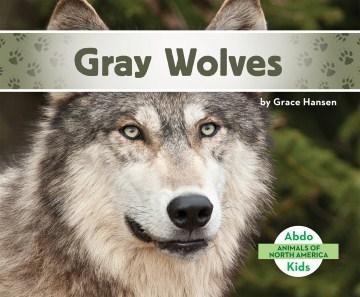 Gray wolves - Grace Hansen