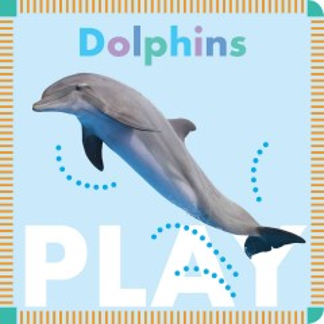 Dolphins play - Rebecca Stromstad Glaser