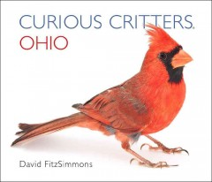 Curious critters Ohio - David FitzSimmons